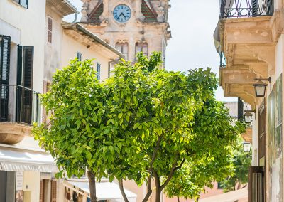 galeria_osteria_el_patio_alcudia_mallorca_27